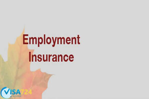 بیمه بیکاری در کانادا