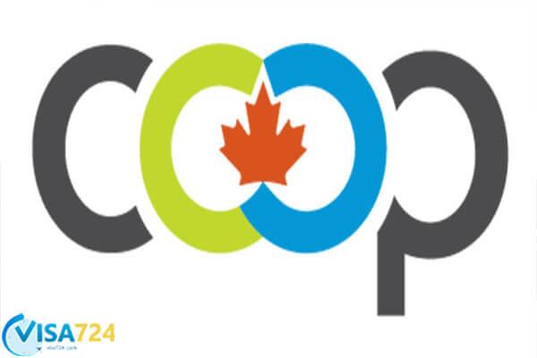 برنامه ی آموزشی co-op در کانادا