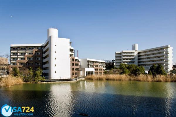 دانشگاه اوساکا ژاپن