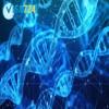معرفی رشته فیزیک پزشکی و نانو تکنولوژی در کانادا