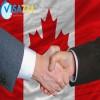 معرفی رشته بیمه در کانادا - تحصیل تا اشتغال