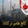 معرفی کالج هامبر در کانادا و نحوه ی پذیرش در آن