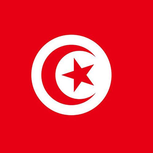ویزای تونس توریستی