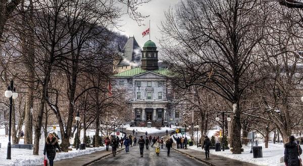پذیرش دانشگاه مک گیل و دریافت ویزای تحصیلی کانادا
