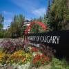 دریافت پذیرش تحصیلی از دانشگاه کلگری کانادا